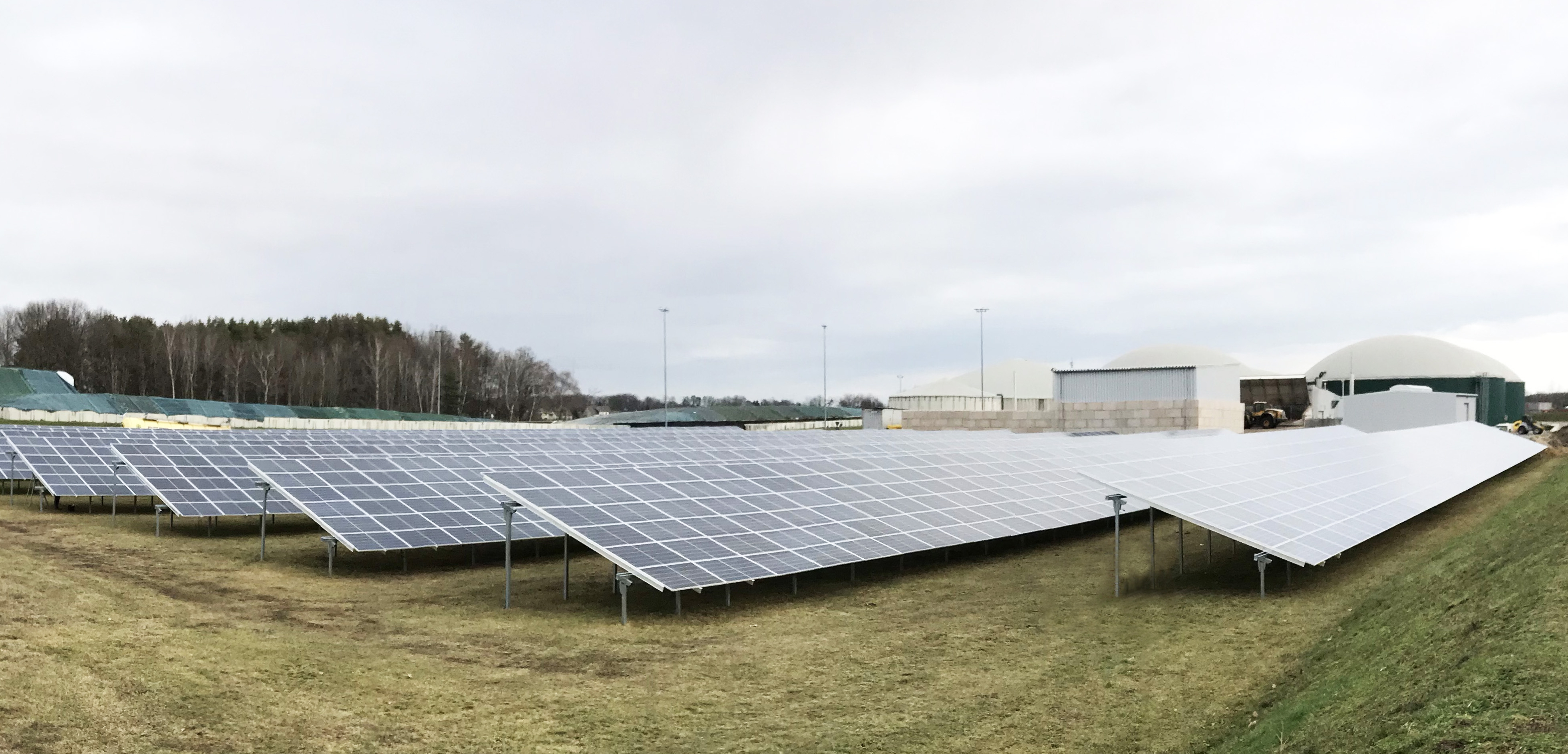 The PV plant in Forst produces solar electricity for the biogas plant's own needs.